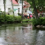 Pienet purret kiiruhtavat Vääksyn joessa.
