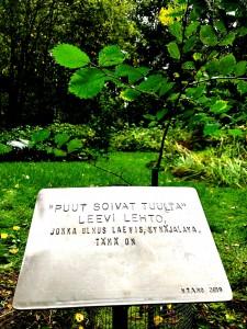 Runoilija Leevi Lehdon muistopuun istutus ja muistolaatan sijoittaminen Norrlinin puistoon.